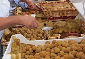 stuffed olives  from Ascoli Piceno